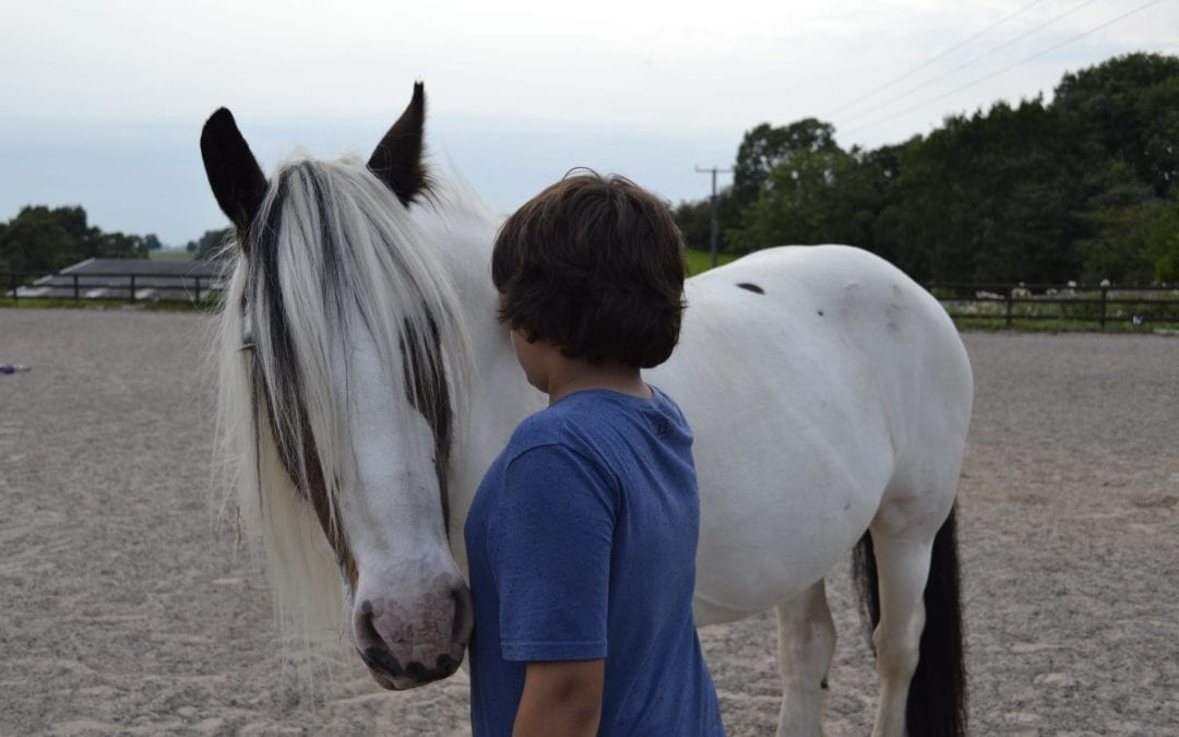 How Can Horses Support Mental Health During the COVID Crisis?